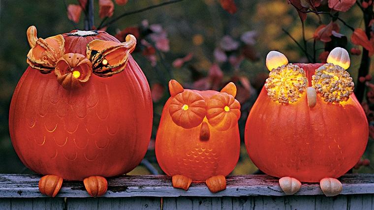 decorazioni halloween gufo zucca illuminato originale