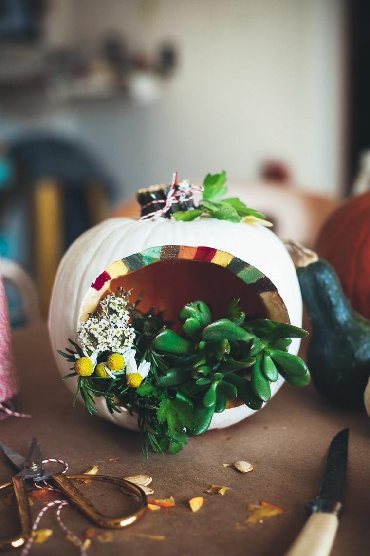 Come intagliare la zucca, zucca intagliata a terrarium, vaso con piante grasse