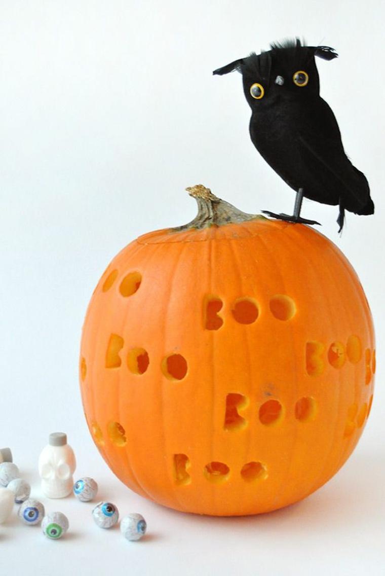 Zucche intagliate, zucca con scritte intagliate, uccello di colore nero finto