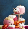 zucche-decorative-decorazione-chic-centrotavola-orginale