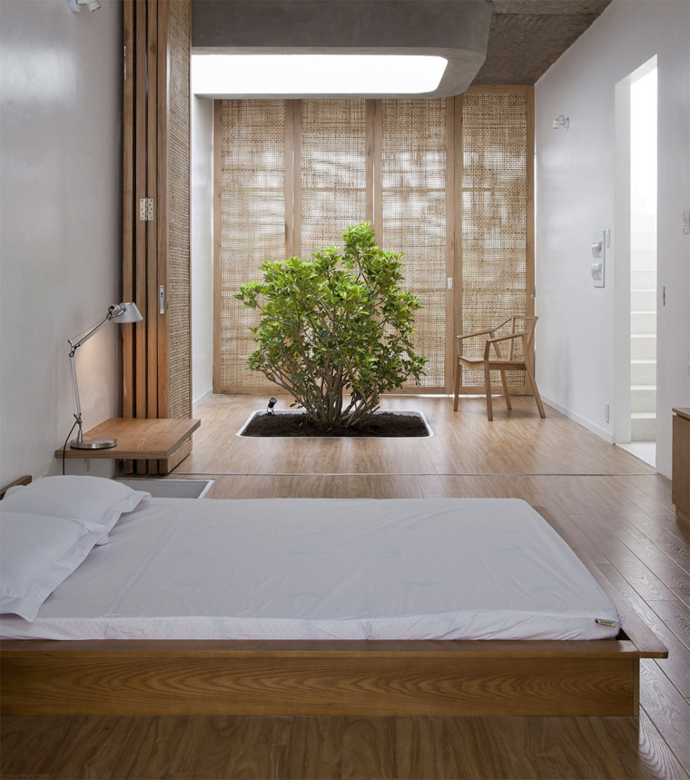 arredo casa moderno stile piante