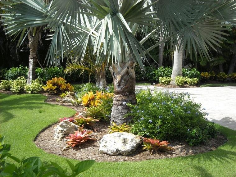 come progettare un giardino palme