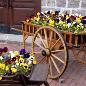 Giardino fai da te - idee decorative per un angolo di casa adorabile