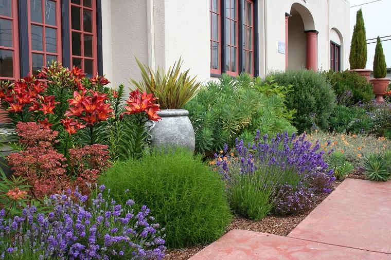 giardino fai da te piante mediterranee