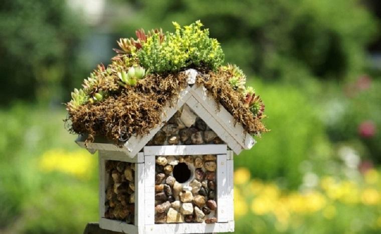 idea casetta uccelli legno sassolini