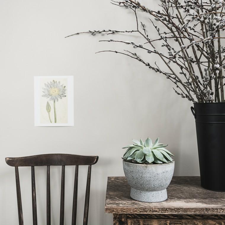 idee giardino decorazione particolare semplice