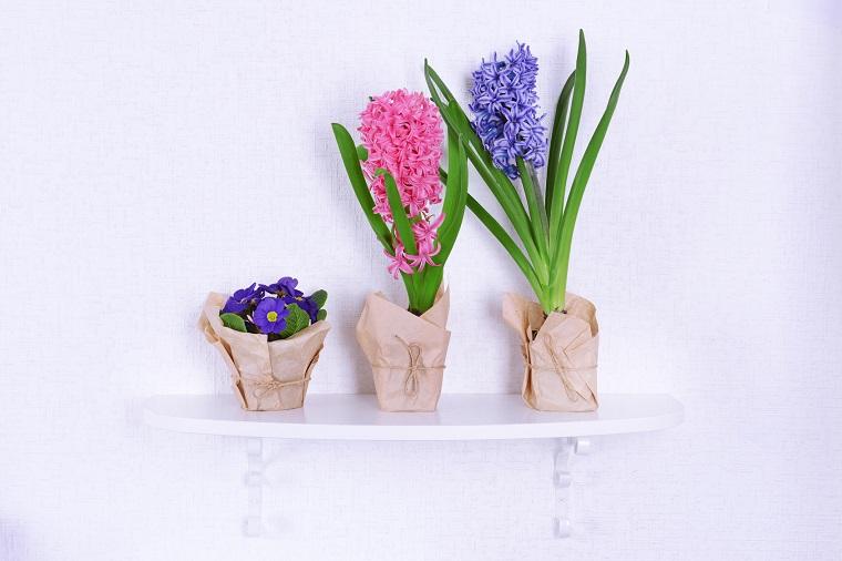 lavoretti primavera primule colorate vasetti