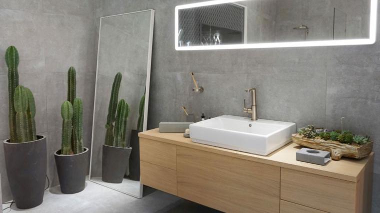 Piante grasse in bagno, mobile di legno sospeso, bagno con parete effetto pietra