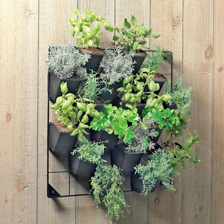 orto verticale erbe aromatiche interno casa