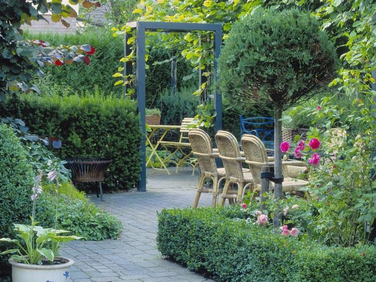 piante da esterno ideali patio