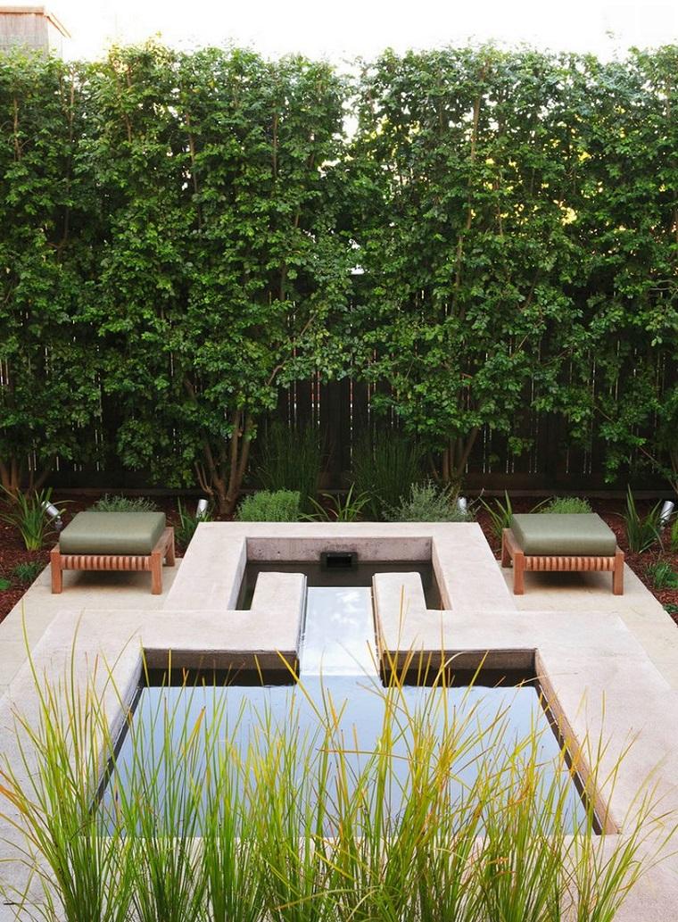 piante da esterno perfette patio moderno