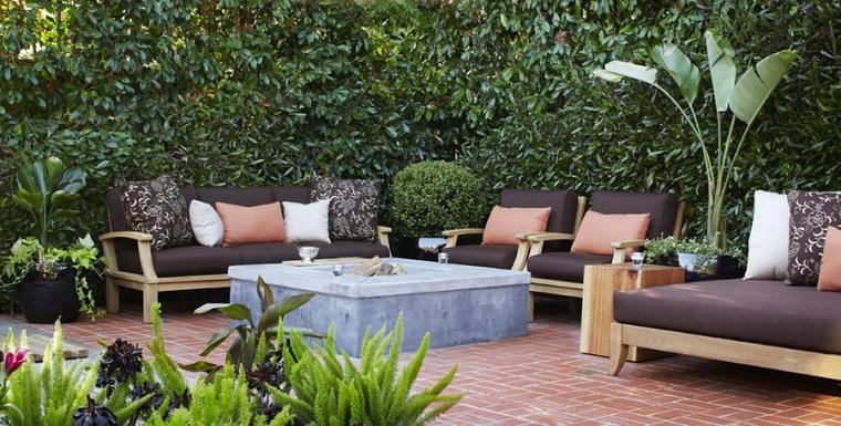 piante da esterno siepe protezione patio