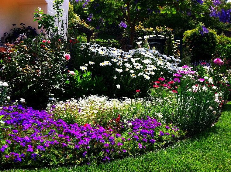 progettare un giardino fiori selvatici