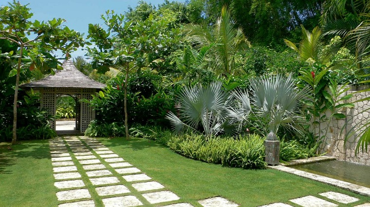 progettare un giardino piante tropicali