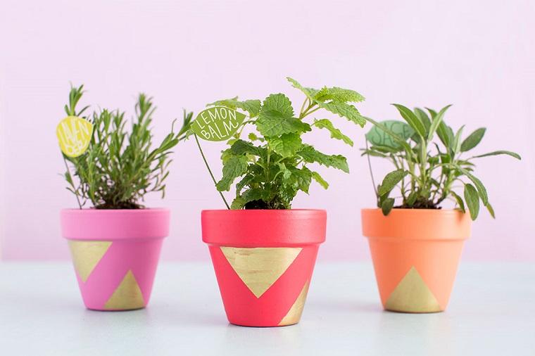 vasi di terracotta piante aromatiche