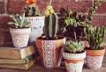 Vasi terracotta, tante idee originali per realizzare decorazioni fai da te