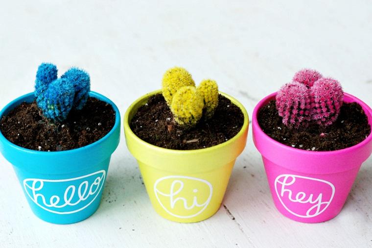 vasi terracotta piante grasse colorate