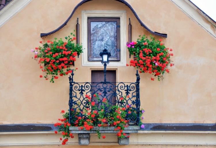 balcone piccolo ringhiera di ferro battuto fiori rossi