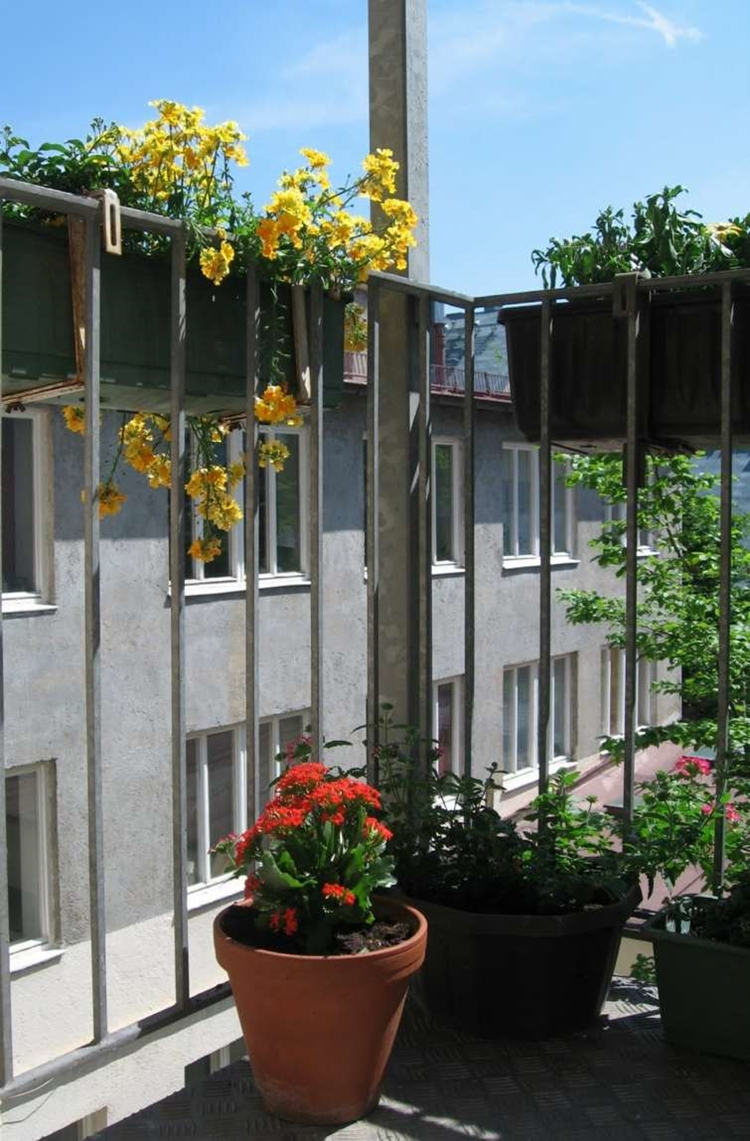 balconi fioriti ringhiere in ferro battuto