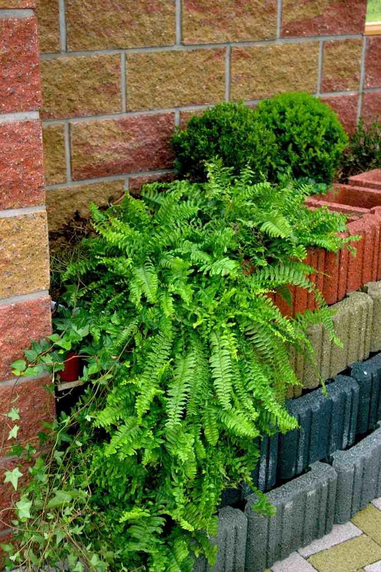 Giardinaggio idee originali per decorare il vostro for Idee originali per il giardino