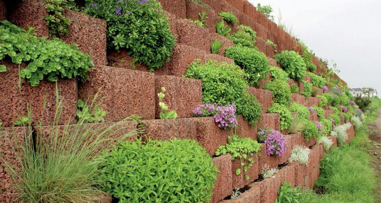 Giardinaggio idee originali per decorare il vostro for Abbellire il giardino