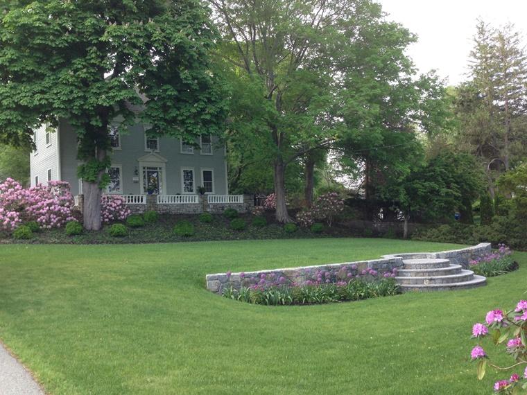 giardino casa alberi prato verde
