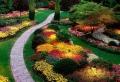 Giardini zen – ecco come rendere spettacolare il vostro giardino