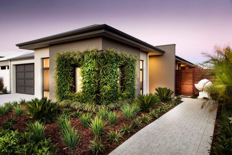 giardino piante sempreverdi parete verde casa
