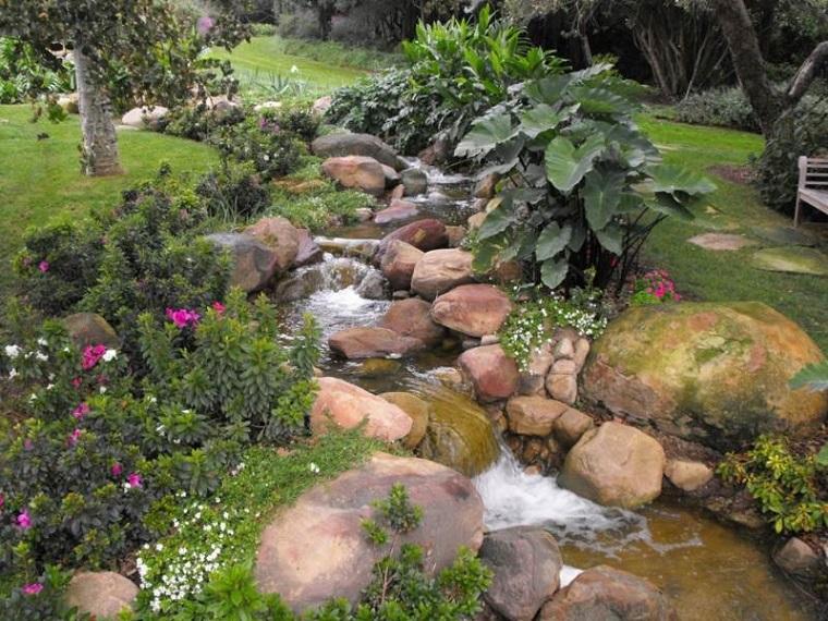 giochi dacqua torrente piante esotiche