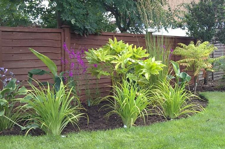 idea decorare giardino piante esotiche