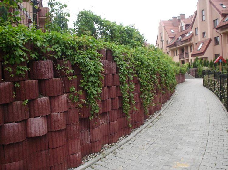 Giardinaggio idee originali per decorare il vostro for Abbellire giardino