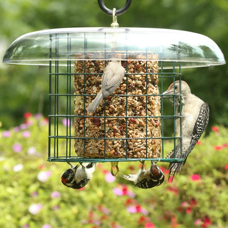 mangiatoia per uccelli semplice pratica particolare
