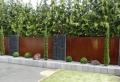 Pareti divisorie da giardino in acciaio Corten: belle, di design e molto resistenti