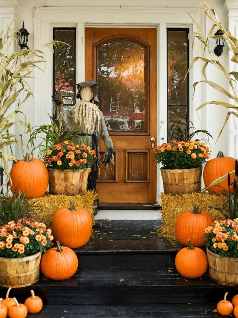 piante autunnali zucche decorazioni halloween