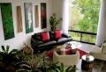 Piante da appartamento, come e dove collocarle per illuminare e abbellire l'ambiente