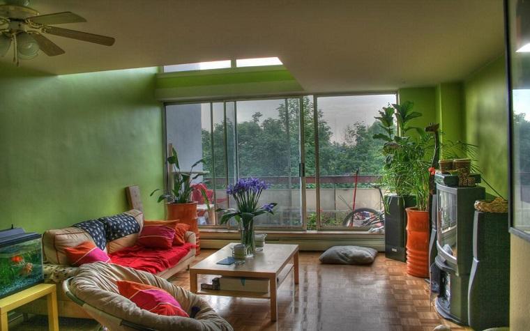 piante da appartamento luce colore area relax