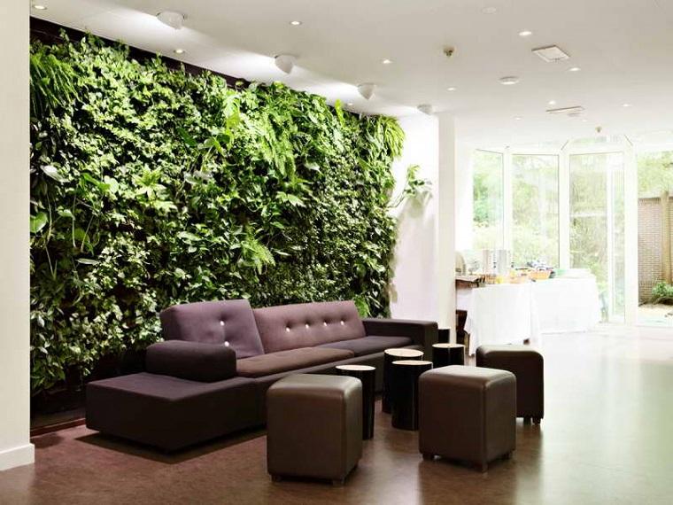 piante da appartamento soluzione parete