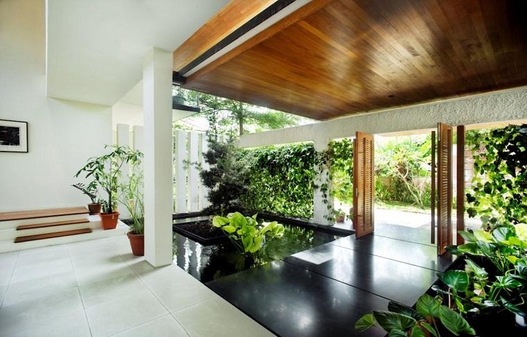 piante da appartamento soluzione stile moderno