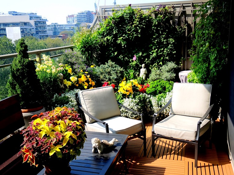 piante da balcone autunnali diverse varieta