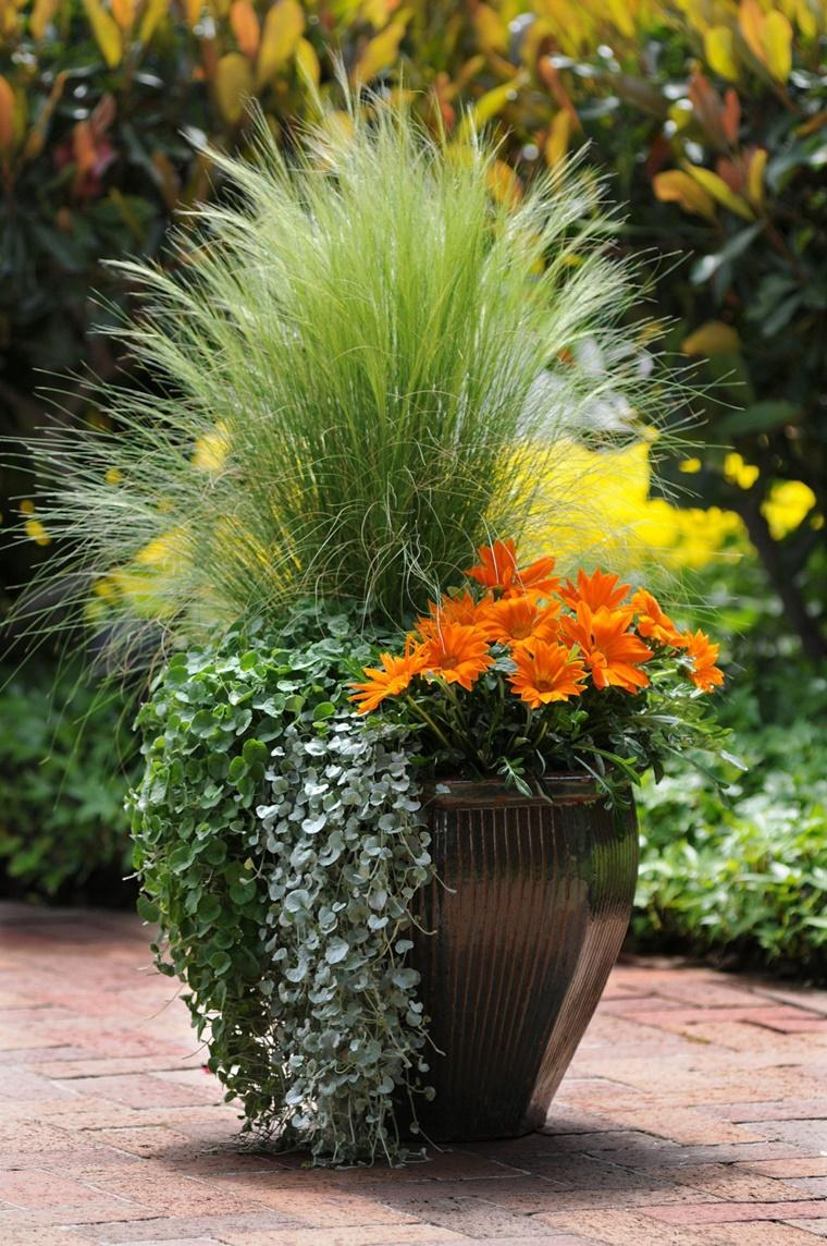 Idee Per Vasi Da Fiori piante da giardino, idee per un nuovo look veramente