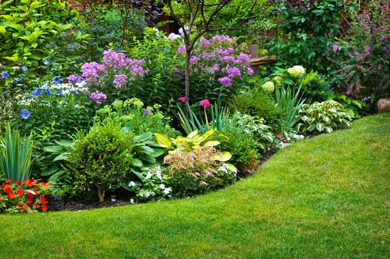 piante da giardino grande composizione floreale