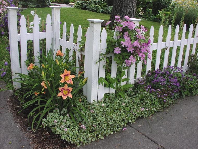 piante da giardino idea decorativa fiori prato verde