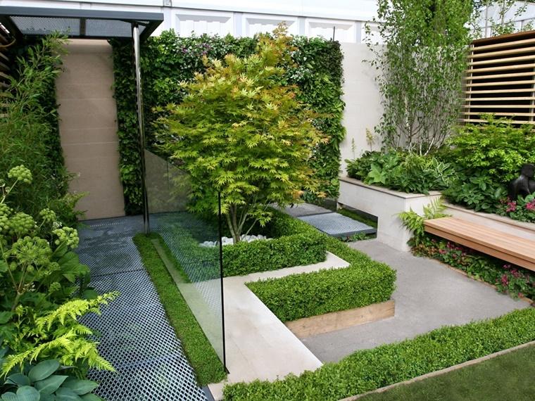piante da giardino muro divisorio vetro