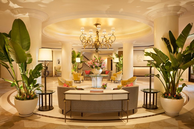 piante da interno decorare sontuoso salotto