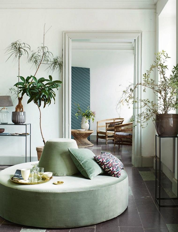 piante da interno decorazione salotto zen