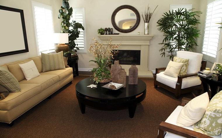piante d'appartamento decorare salotto piccolo