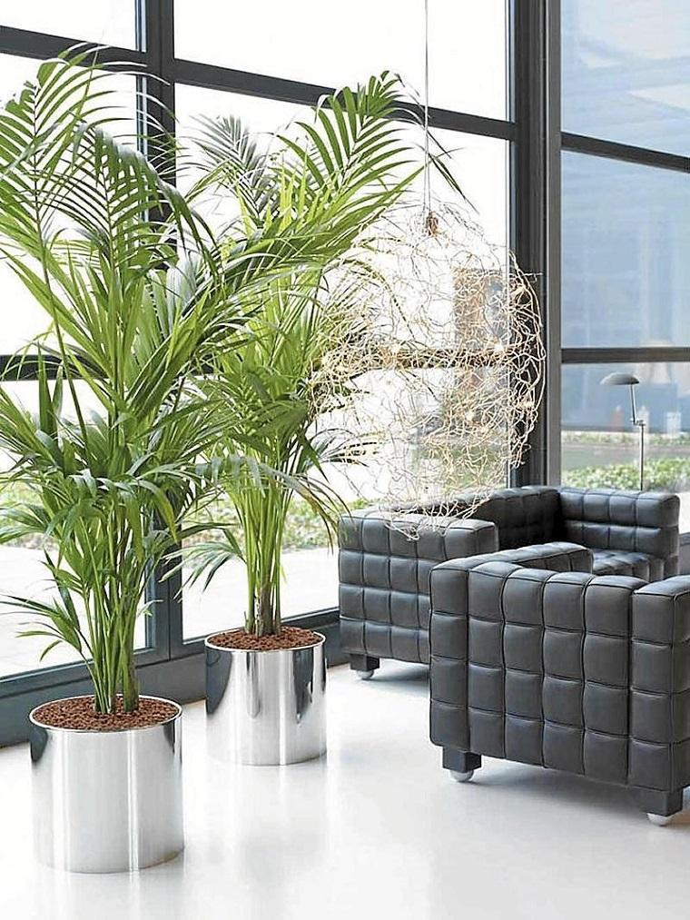 piante d'appartamento salotto vasi argento