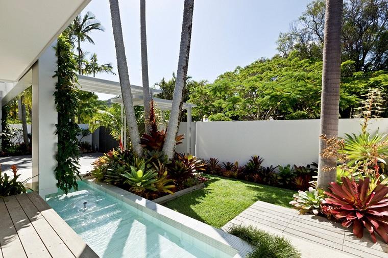 piante ornamentali da giardino ambiente moderno piscina