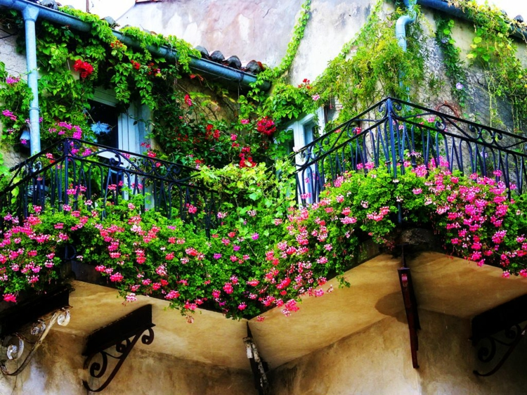 ringhiere in ferro battuto balcone fiorito
