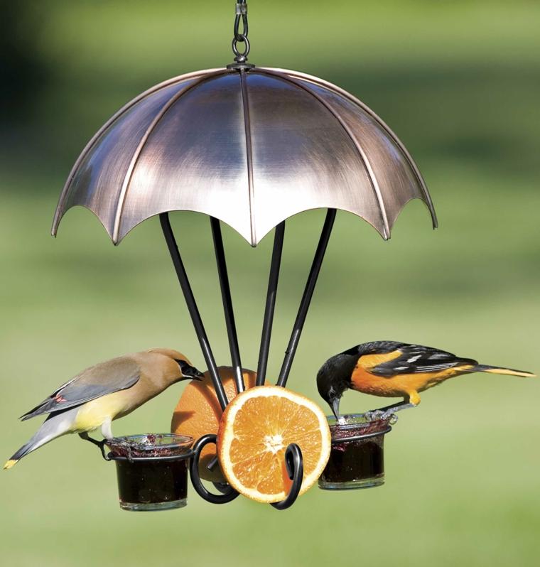 uccellini mangiatoia particolare utile interessante
